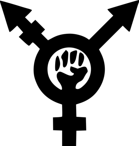 Transfeminism symbol from Wikipedia